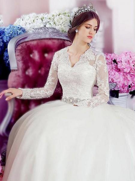 A-lijn/Prinses Lange Mouwen V-Hals Kathedraalsleep Appliqué Kant Tule Bruidsjurken